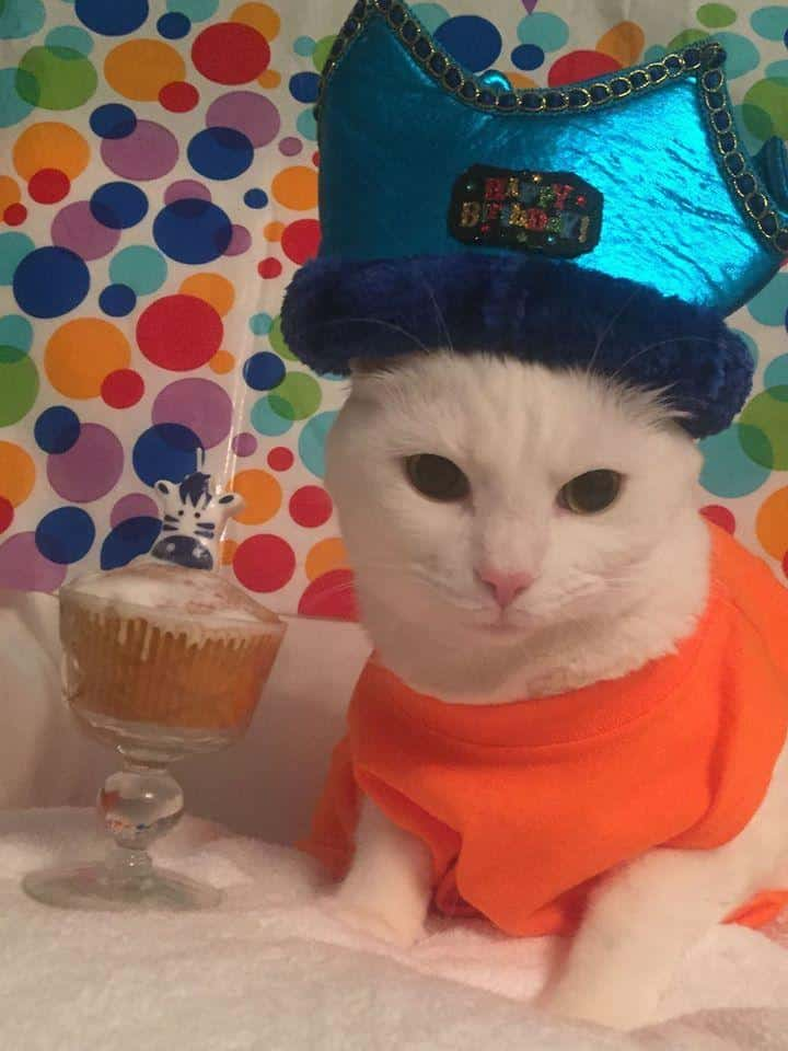 Celebrating a Birthday at Your Wedding